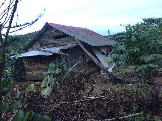 Diễn biến mới vụ liều lĩnh bắt cóc ông chủ vườn dừa để đòi 4,5 tỉ tiền chuộc - Ảnh 2.