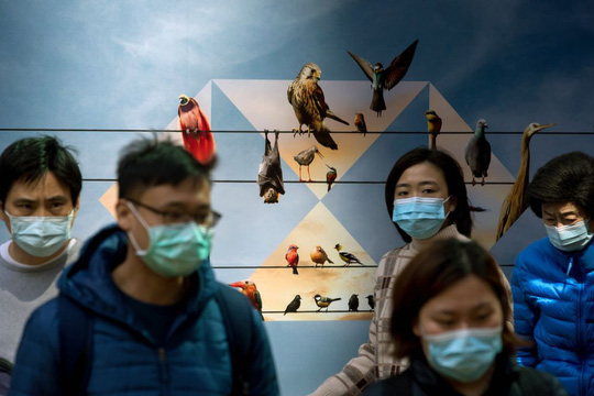 """Biện pháp chống virus corona """"không giống ai"""" ở Trung Quốc - Ảnh 2."""