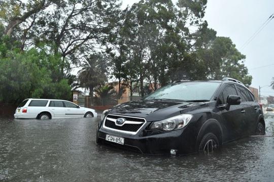 Úc: Mưa lớn dập tắt cháy rừng khủng, làm người dân chạy lũ khẩn cấp - Ảnh 1.