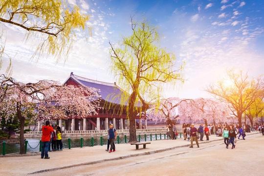 Trải nghiệm một Hàn Quốc mới lạ cùng BenThanh Tourist - Ảnh 1.