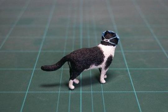 Covid-19: Cả mèo cũng đeo khẩu trang ở Trung Quốc - Ảnh 2.