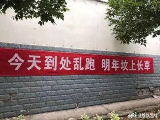 """Băng rôn phòng chống virus corona """"khó đỡ"""" ở Trung Quốc - Ảnh 12."""