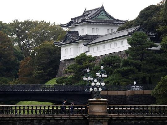 Những cung điện hoàng gia xa hoa trên thế giới - Ảnh 6.