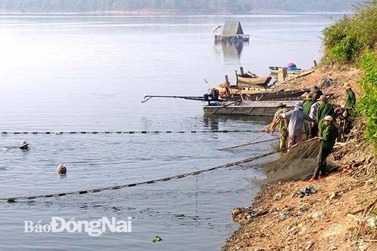 Đồng Nai: Nhiều người vây luồng cá nặng hàng tấn ở hồ sông Mây - Ảnh 2.