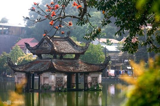 Rực đỏ hoa gạo trước sân chùa Thầy - Ảnh 2.