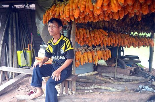 Điều gì tại khu rừng thiêng 300ha ở Quảng Ninh khiến lâm tặc sợ đến khiếp vía? - Ảnh 1.