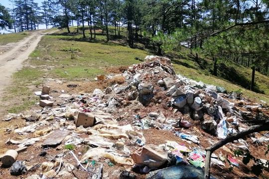 Lâm Đồng chỉ đạo xử lý ngay vụ rác bủa vây Đà Lạt - Ảnh 2.