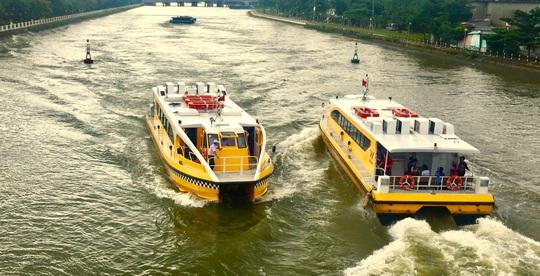 Kiến nghị ngưng buýt sông, xe buýt không chở quá 20 khách - Ảnh 2.