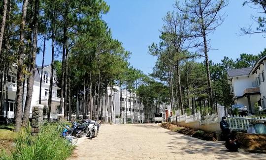 Đà Lạt cưỡng chế khu nghỉ dưỡng cao cấp băm nát hồ Tuyền Lâm - Ảnh 8.