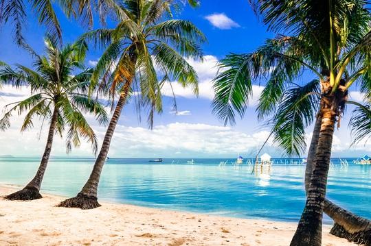 10 vùng biển đẹp nhất Việt Nam. - Ảnh 8.
