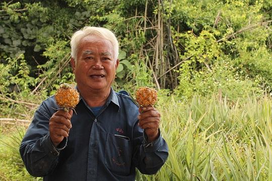 Dứa mini Thái đổ về Việt Nam - Ảnh 2.