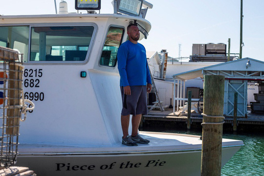 Ngư dân Mỹ không bán được tôm hùm mùa dịch Covid-19 - Ảnh 1.