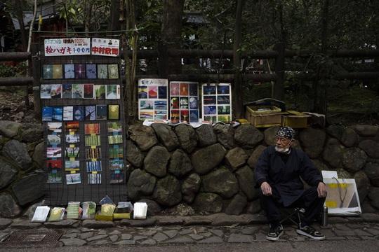 Cố đô Nhật Bản những ngày vắng bóng du khách - Ảnh 3.