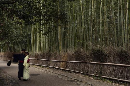 Cố đô Nhật Bản những ngày vắng bóng du khách - Ảnh 6.