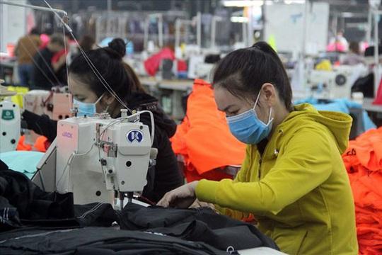 Bình Định: Giải quyết cho 1.160 lao động tạm thời dừng đóng BHXH - Ảnh 1.