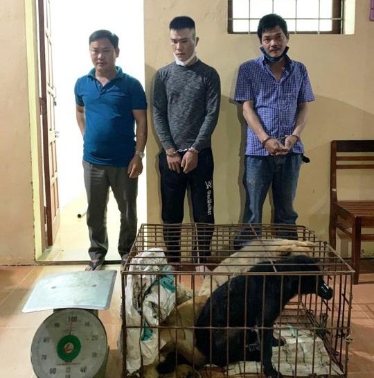 Bắt băng nhóm chuyên trộm chó tung hoành khu vực bắc Quảng Bình - Ảnh 1.