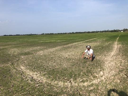 Tìm kiếm nguồn nước ngọt cho dân ĐBSCL, Tây Nguyên - Ảnh 1.