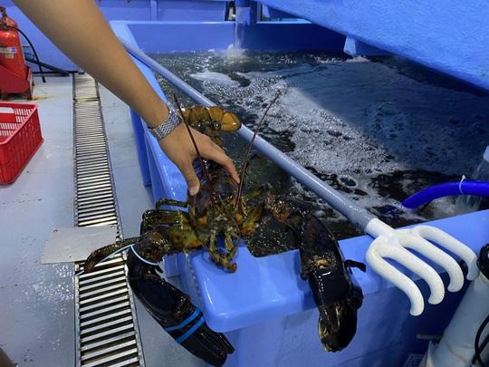 Thủy hải sản nhà giàu giảm giá tới 50% vẫn ế - Ảnh 1.
