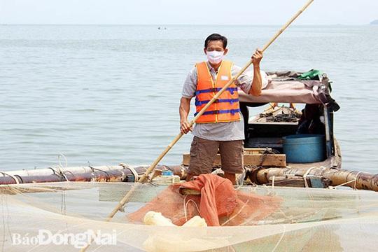 Nhiều người lao ra hồ Trị An lúc nửa đêm để hốt cá nổi dềnh trên mặt nước - Ảnh 1.