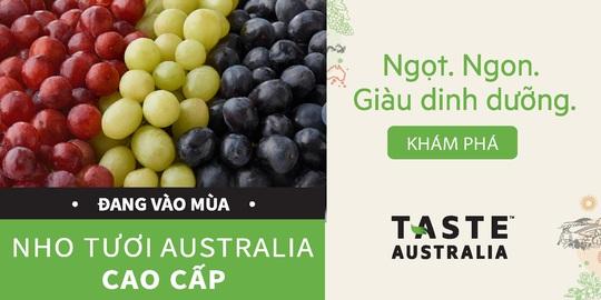 Nho Úc mùa vụ mới trên kệ hàng siêu thị Việt - Ảnh 4.