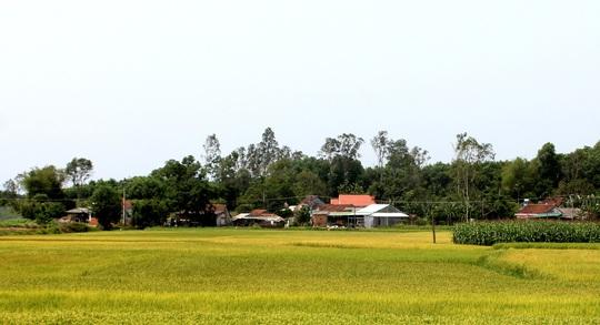 Chuyện làng Gia Hội - Ảnh 2.