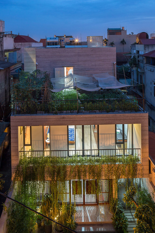 Nhà thiết kế với nhiều khu vườn nhỏ bên trong - Ảnh 1.