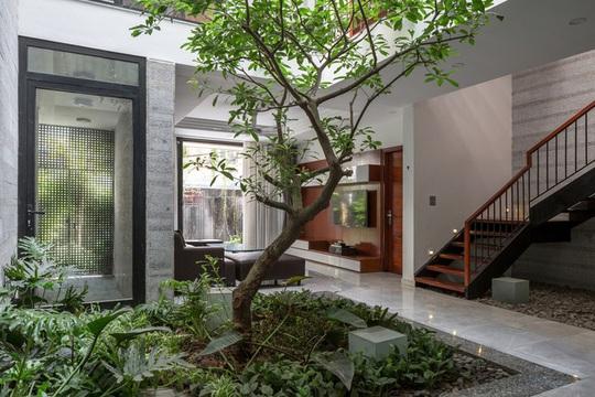 Nhà thiết kế với nhiều khu vườn nhỏ bên trong - Ảnh 4.