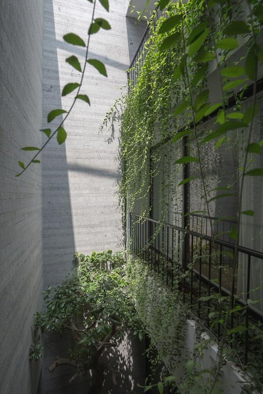 Nhà thiết kế với nhiều khu vườn nhỏ bên trong - Ảnh 9.