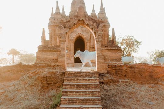 Cuộc sống ở Myanmar là những khung hình bình dị và yên ả - Ảnh 29.