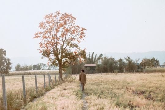 Cuộc sống ở Myanmar là những khung hình bình dị và yên ả - Ảnh 31.