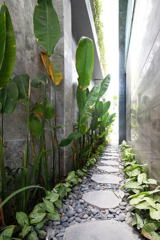 Căn biệt thự lấy cảm hứng thiết kế từ những rặng san hô - Ảnh 6.