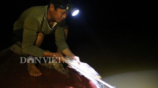 Nín thở theo dấu đàn cá ngon trên sông Đà - Ảnh 5.