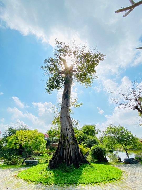 Sống ảo ở những điểm lạ mà quen khi vi vu Phú Yên, Quy Nhơn - Ảnh 5.