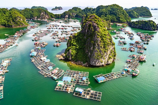 Leonardo DiCaprio kêu gọi du khách giữ gìn Vịnh Lan Hạ của Việt Nam - Ảnh 4.