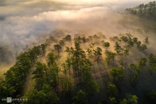 Sương giăng phố núi - Ảnh 10.