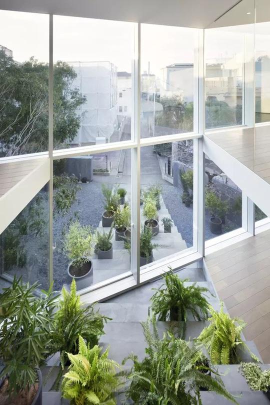 Ngôi nhà ấn tượng với cầu thang xuyên từ ngoài vào trong - Ảnh 12.
