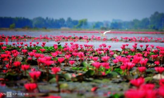 Vẻ đẹp Tây Ninh - Ảnh 4.