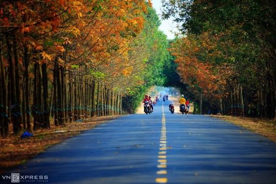 Vẻ đẹp Tây Ninh - Ảnh 7.