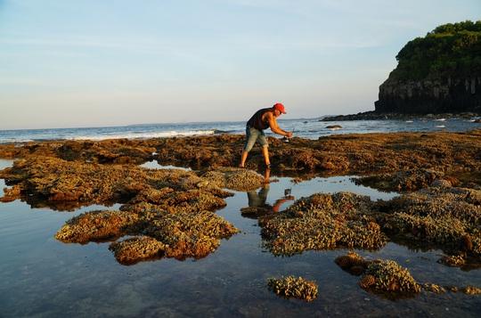 Ngắm tuyệt tác san hô cực đẹp ở Gành Yến – Quảng Ngãi - Ảnh 4.