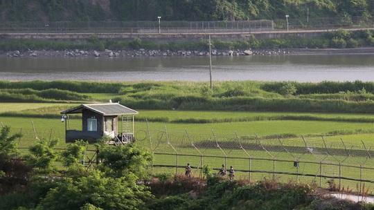 Bị Triều Tiên ép, Hàn Quốc vẫn đợi như thú săn mồi - Ảnh 1.