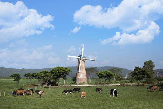 5 nông trại Đà Lạt đẹp tựa trời Âu - Ảnh 4.