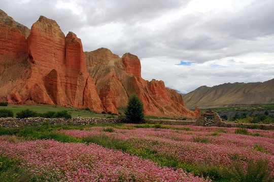 Vương quốc ẩn khuất trên dãy Himalaya, nơi phụ nữ lấy nhiều chồng - Ảnh 9.