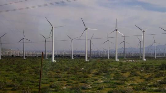 Mexico: Chỉ vì phản đối dự án điện gió, 15 người bị phục kích giết dã man - Ảnh 1.