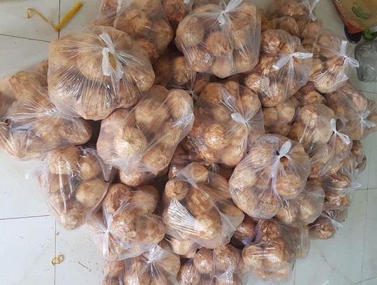 Ngày bán 5.000 quả dừa tí hon, hàng lạ gây sốt ngày nắng cháy - Ảnh 3.