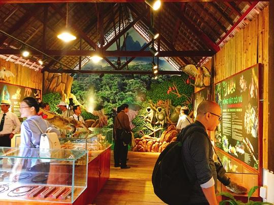 Đảo Hoa Lan - thiên đường du lịch bí ẩn tại Nha Trang - Ảnh 9.