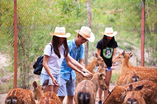 Từ ngày 1-6, Khu du lịch Đảo Khỉ và Đảo Hoa Lan đón khách trở lại - Ảnh 11.
