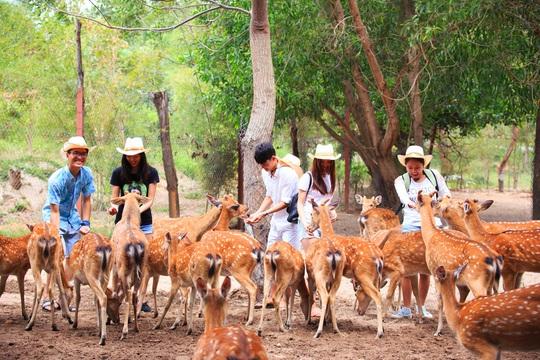Từ ngày 1-6, Khu du lịch Đảo Khỉ và Đảo Hoa Lan đón khách trở lại - Ảnh 2.