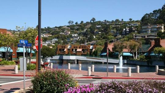 Những thị trấn giàu nhất tại Mỹ: Thu nhập khủng, giá nhà triệu đô - Ảnh 7.