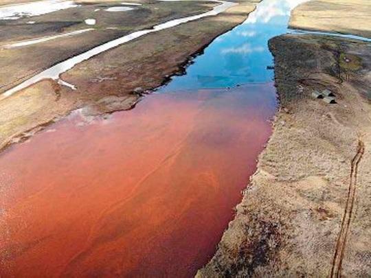 """Ông Putin nổi giận vì """"dòng sông máu"""" ở Bắc Cực - Ảnh 3."""