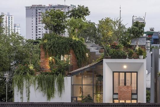 Ngôi nhà có công viên trên sân thượng - Ảnh 1.